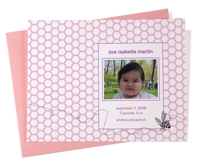 Baby bee girl grid